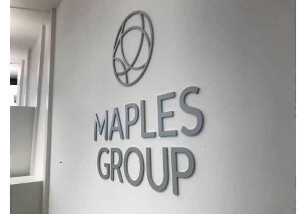 logo 3D relief