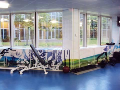 création ambiance salle de fitness