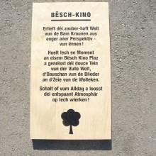 Besch-Kino fraiseuse multicam