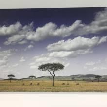 reproduction photo impression panneau